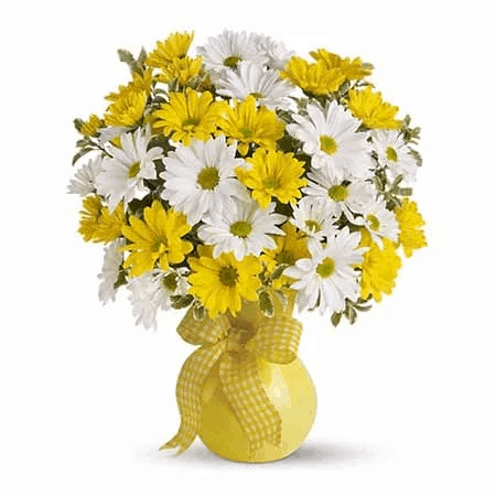 daisies for mothers day
