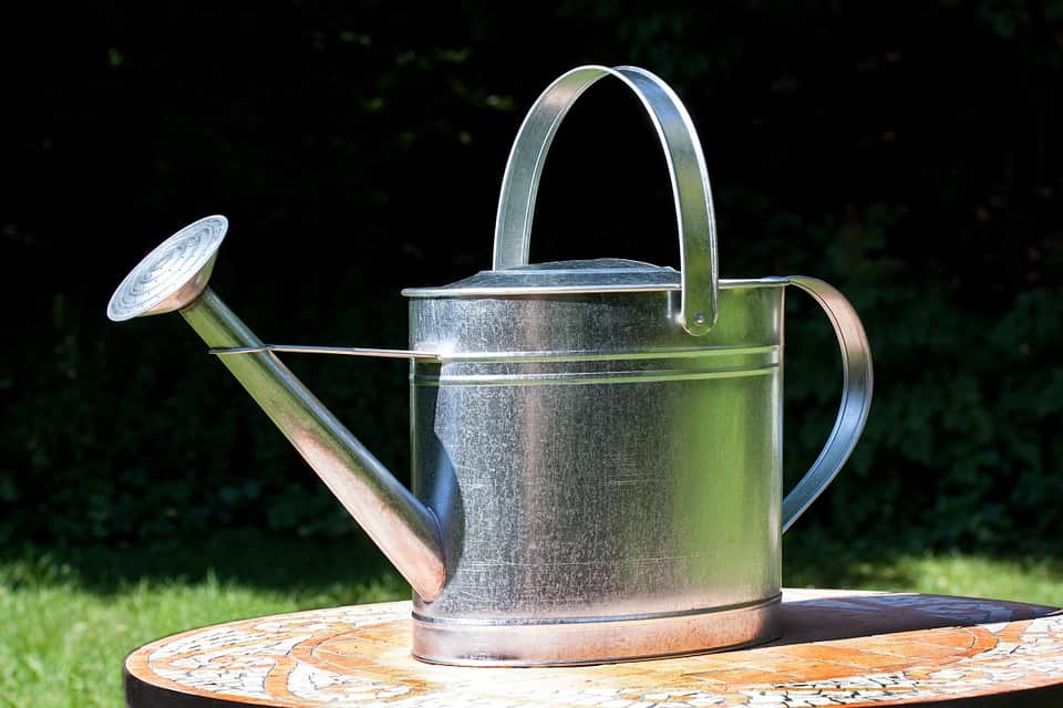 watering can 397301 960 720