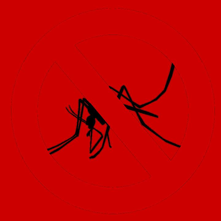mosquito 1465062 960 720